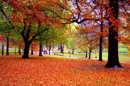 Stock image of fall foliage at Boston Public Garden Stock Photo - 2783921