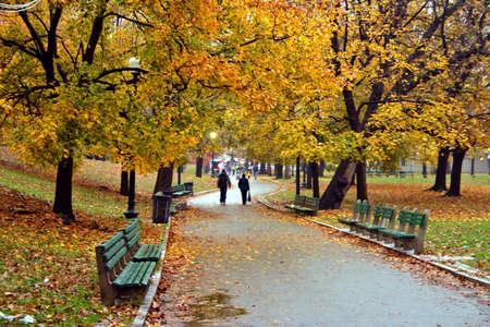 Stock image de feuillage d'automne ? Boston Public Garden