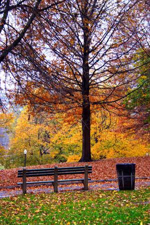 Stock image of fall foliage at Boston Public Garden  Stock Photo - 2793228