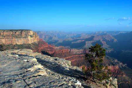 Grand Canyon National Park (South Rim), USA   photo