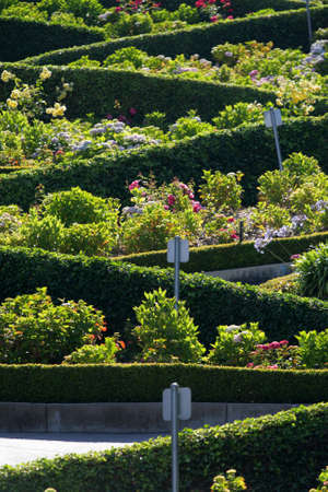 View of Lombard Street, the crookedest street in the world, San Francisco, California Stock Photo - 6153441