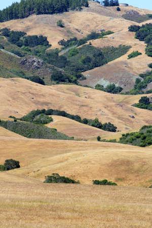Stock image of Californias Central Coast, Big Sur, USA   photo