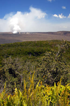 Stock image of Hawaii Volcanoes National Park, USA   photo
