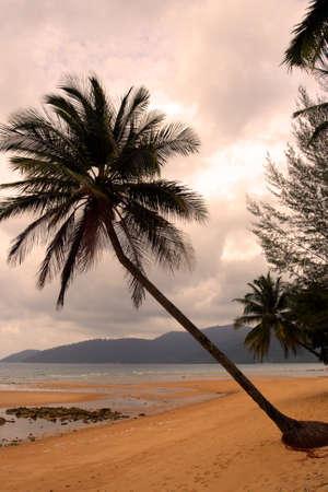 Tioman island, Malaysia Stock Photo - 8264200