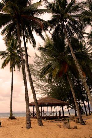 Tioman island, Malaysia Stock Photo - 8264970