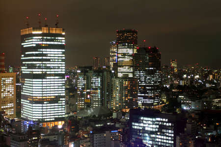 Tokyo skyline at night Stock Photo - 13243690