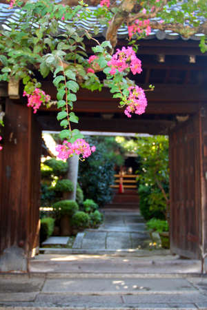 Ishibe-Koji Lane is one of the last of the old traditional streets of Kyoto   photo