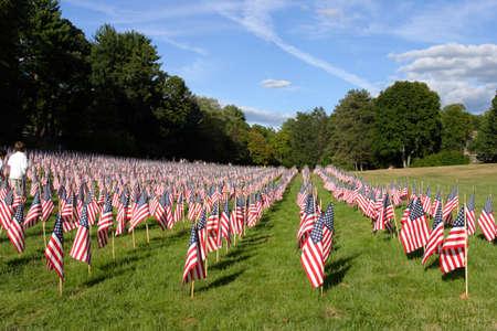 american flags: El campo de banderas
