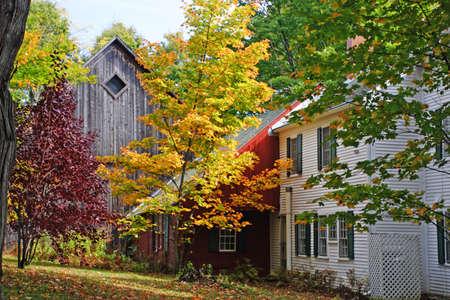 Fall foliage at Vermont, USA   Stock Photo