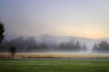 streaking: Sunlight streaking through foggy trees on an autumn morning
