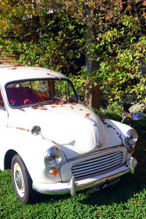 antique car: Antique Car