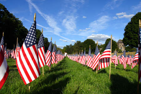 Field of American Flags Editorial