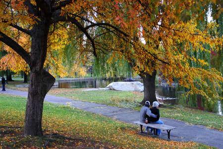 Stock image of fall foliage at Boston Public Garden Stock Photo