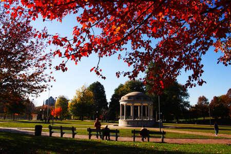 Stock image of fall foliage at Boston Public Garden Editorial