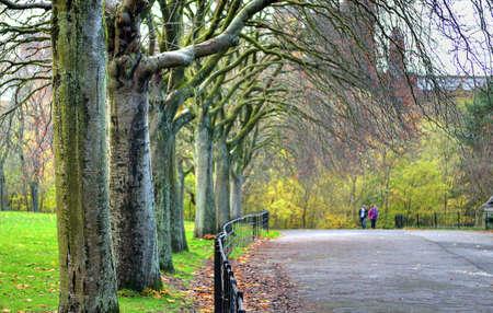 glasgow: Kelvingrove Park - Glasgow, Scotland