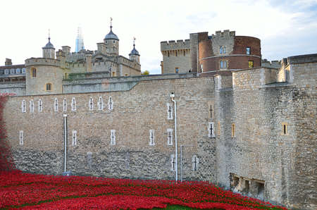 ww1: Tower of London with sea of Red Poppies to remember the fallen soldiers of WWI - 30th August 2014 - London, UK