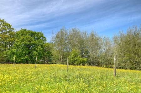 cumbria: Classic british landscape at the Peak district near Manchester
