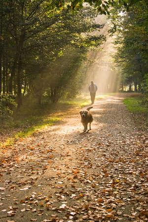 Een man en zijn hond wandelen in het bos