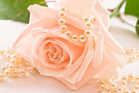 Zacht roze roos met groene bladeren en parels