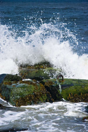 Breakers on basalt rocks at the coast on sunny day Stock Photo - 4862720
