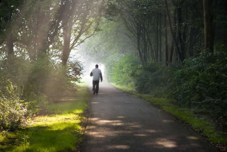 Middle aged man jogging on early summer morning in park photo