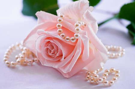 Weiche rosa Rose mit einer Perlenkette
