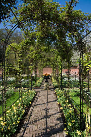 Springtime in formal garden with pergola and vase ornament photo