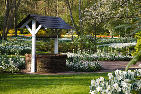 Draw-well in white flower garden on early morning in spring Stock Photo