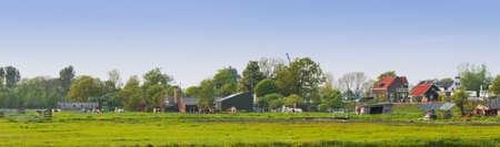 Panorama Nederlandse land landschap met boerderijen en koeien op de avond in het voorjaar van