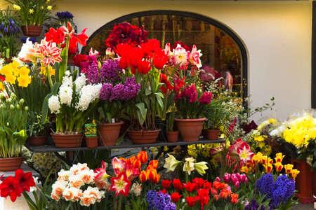 Allerlei kleurrijke Lentebloemen buiten een winkel van de bloemist Stockfoto