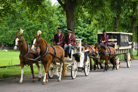 VLAARDINGEN, THE NETHERLANDS-May 2009-Coaches and horses with bride, bridegroom and family on their way to the town hall