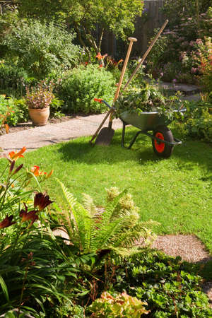 Work in summer garden in the morning with wheelbarrow, shovel and rake - vertical