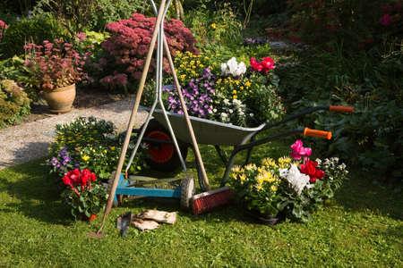 Wheelbarrow, grass mower, garden equipment, tools, preparing for planting new plants in the garden on early September morning photo