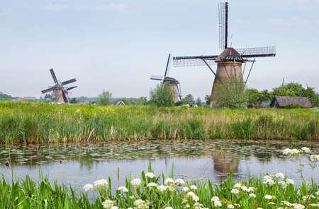 molino de agua: Paisaje rural holandés con molinos de viento y el perejil en flor de vaca en el lado del agua en la primavera en Kinderdijk, Países Bajos Foto de archivo