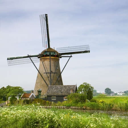 Windmill with blooming Cow parsley in spring nearby Kinderdijk, the Netherlands photo