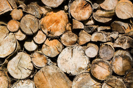 sawed: Sawed and cutted tree-trunks as dried wood for the fire in winter Stock Photo