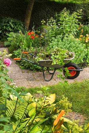 Cleaning up summer garden full of flowers and wheelbarrow with garden-waste, plants and weeds - vertical, Stock Photo