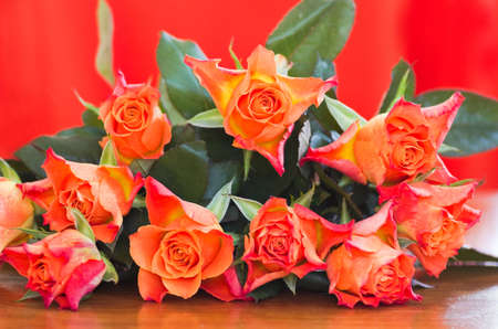 rosas naranjas: Rosas de color naranja con el fondo naranja - horizontal