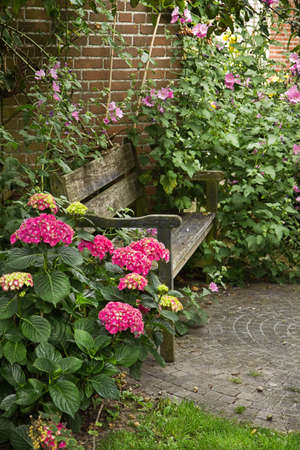 Country-style garden with bench and lots of flowers in summer