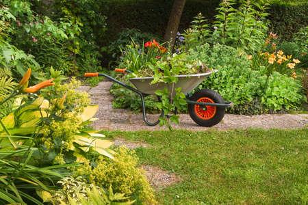 Wheelbarrow with garden-waste in blooming summergarden Stock Photo