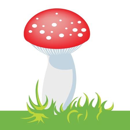mushroom Stock Vector - 10851477
