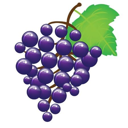 raisins: buch of grapes Illustration