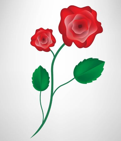 rose stem: single rose Illustration