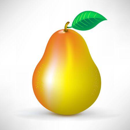 fruited: pear Illustration