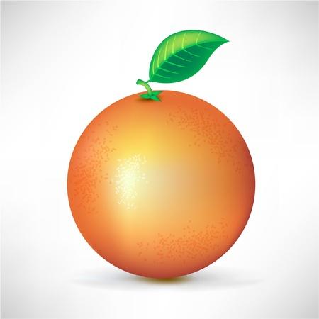 fruited: orange