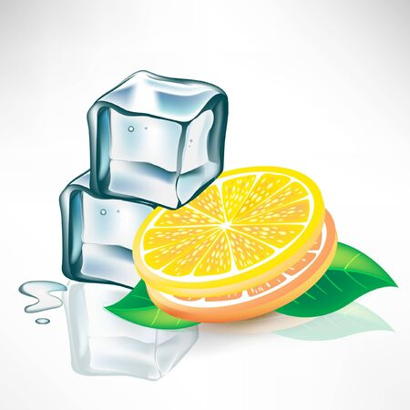 ice cubes: two ice cubes and lemon slices with mint Illustration