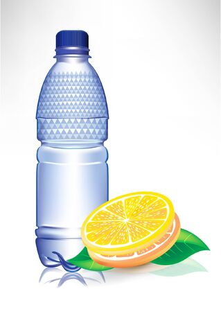 plastic water bottle with lemon slices and mint Vector