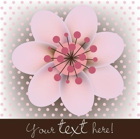 enkele bloei cherry bloem kaart Stock Illustratie
