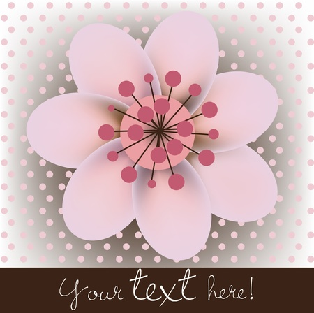 single blossomed cherry flower card Vector