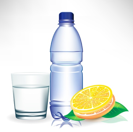 acqua vetro: bicchiere d'acqua con la bottiglia e limone isolato Vettoriali